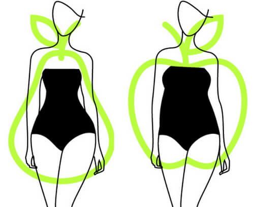 Типы формы тела