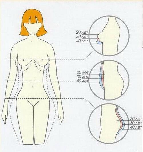 Изменение формы женского тела с возрастом