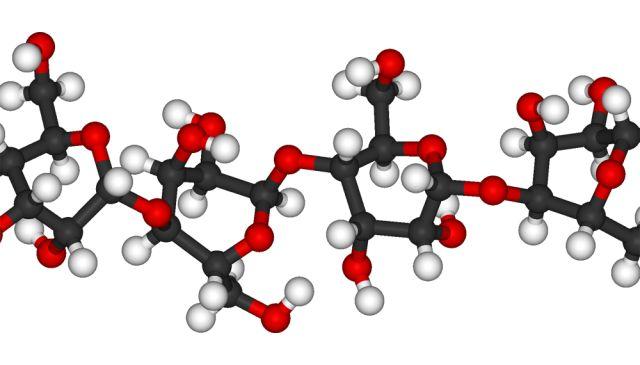Молекула крахмала